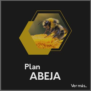 Plan Abeja - Tarjetas Digitales